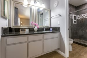 7750 via Catalina Master Bathroom
